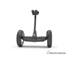 Segway Ninebot S, Beginner mode. App connection Android..